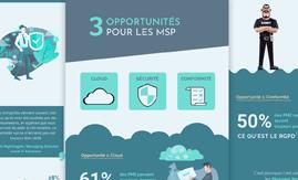 Quelles opportunités pour les MSP?